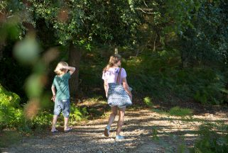 Children on a dorset family holiday walking the wooded pathways